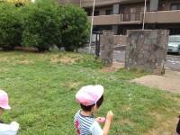 20130530押切公園2